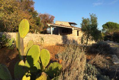 Pajara Marancio esterno con cactus   Residenza in pietra in affitto Salento Feudo Frammasi